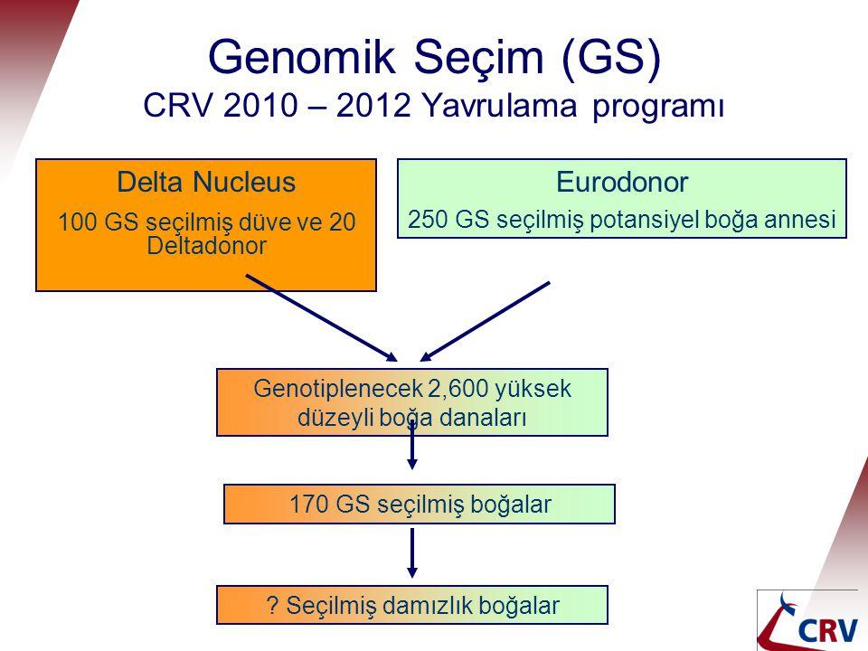 Genomik Seçim (GS) CRV 2010 – 2012 Yavrulama programı Delta Nucleus 100 GS seçilmiş düve ve 20 Deltadonor Eurodonor 250 GS seçilmiş potansiyel boğa an
