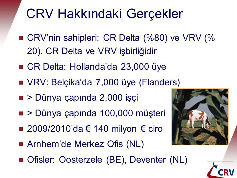 Dünya Çapında CRV  CRV Holding (CRV BV ve CRV International)  Bağlı kuruluşlar (AI station)  CRV Lagoa, Brezilya  CRV Çek Cumhuriyeti  CRV Ambreed, Yeni Zelanda  CRV ABD  CRV Almanya  Bağlı kuruluşlar (satışlar ve hizmet)  CRV İspanya  CRV Lüksemburg  CRV Avustralya  CRV Xseed, Güney Afrika