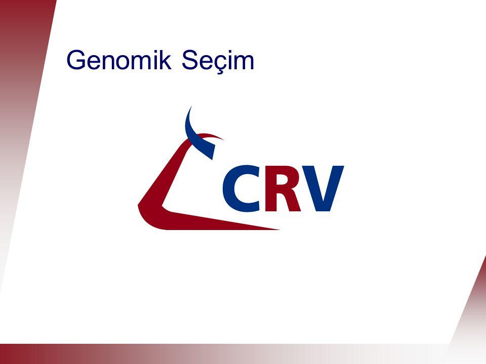 Hollanda'da yavrulamanın tarihçesi  Yavrulama soya göre seçilmeye dayalıdır  Yavrulama döl testiyle seçilmeye dayalıdır (1970'den beri)  Yavrulama Genomik Seçimle seçilmeye dayalıdır (2009'dan beri)