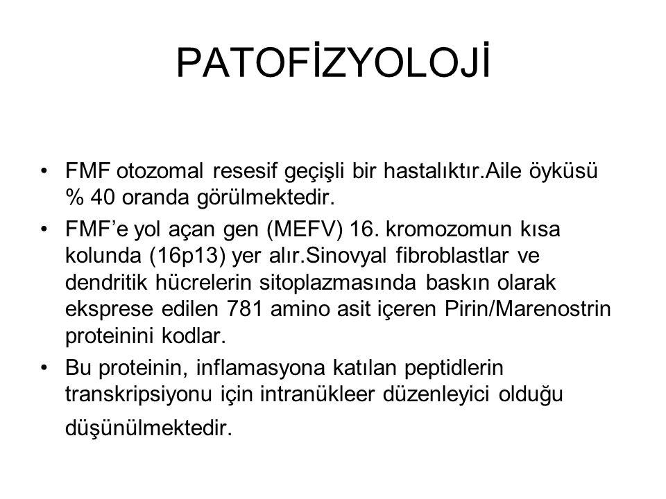 PATOFİZYOLOJİ FMF otozomal resesif geçişli bir hastalıktır.Aile öyküsü % 40 oranda görülmektedir. FMF'e yol açan gen (MEFV) 16. kromozomun kısa kolund