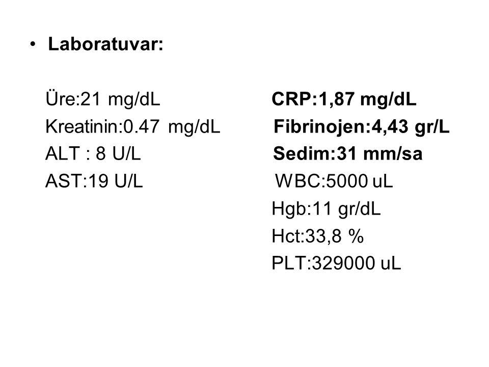 Laboratuvar: Üre:21 mg/dL CRP:1,87 mg/dL Kreatinin:0.47 mg/dL Fibrinojen:4,43 gr/L ALT : 8 U/L Sedim:31 mm/sa AST:19 U/L WBC:5000 uL Hgb:11 gr/dL Hct: