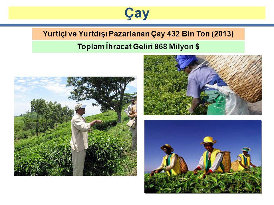 Yurtiçi ve Yurtdışı Pazarlanan Çay 432 Bin Ton (2013) Toplam İhracat Geliri 868 Milyon $ Çay