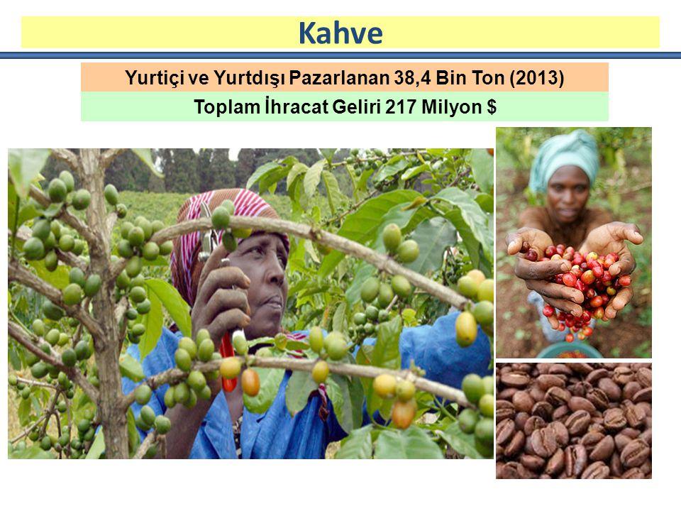 Yurtiçi ve Yurtdışı Pazarlanan 38,4 Bin Ton (2013) Toplam İhracat Geliri 217 Milyon $ Kahve