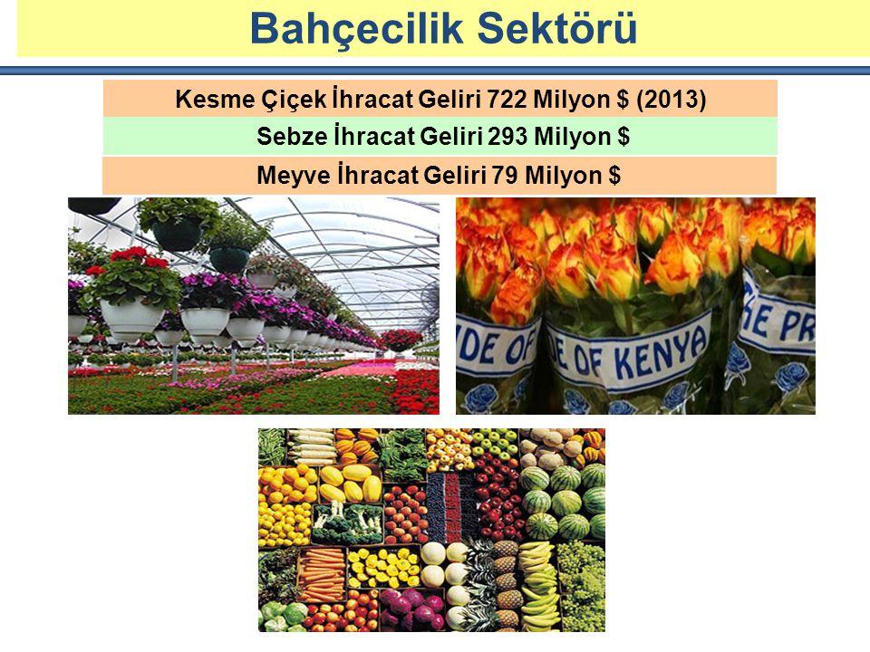 KESME ÇİÇEK ÜRETİMİ VE İHRACATI Kesme Çiçek İhracat Geliri 722 Milyon $ (2013) Sebze İhracat Geliri 293 Milyon $ Bahçecilik Sektörü Meyve İhracat Geliri 79 Milyon $