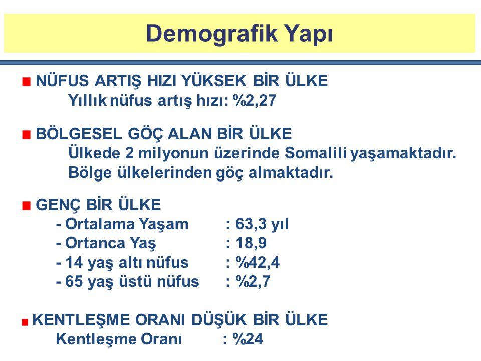 Türkiye'nin Kenya'ya İhracatı (2013)