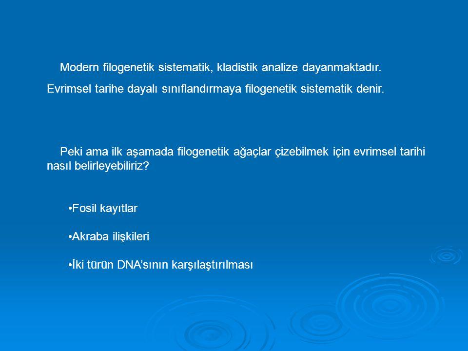 Modern filogenetik sistematik, kladistik analize dayanmaktadır. Evrimsel tarihe dayalı sınıflandırmaya filogenetik sistematik denir. Peki ama ilk aşam