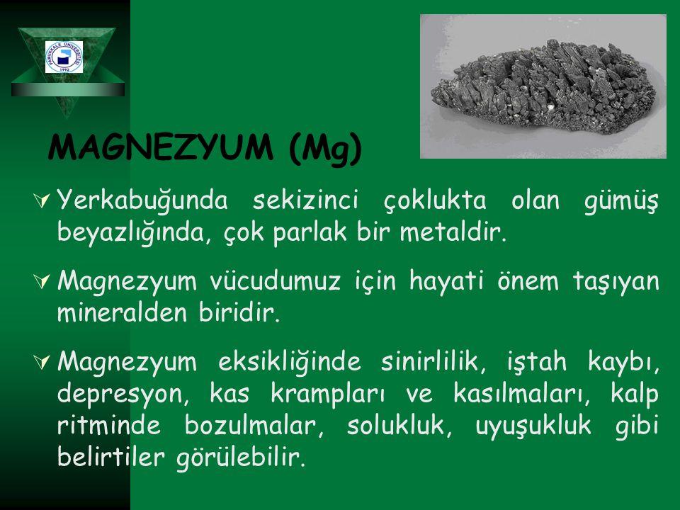 MAGNEZYUM (Mg)  Yerkabuğunda sekizinci çoklukta olan gümüş beyazlığında, çok parlak bir metaldir.  Magnezyum vücudumuz için hayati önem taşıyan mine