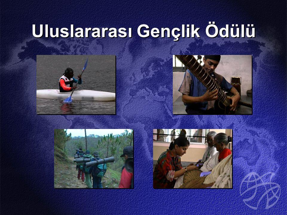 MEB 2003 yılında, Ödül Programının İstanbul ve İzmir illerindeki lise ve dengi okullarda uygulanmasını uygun görmüştür.