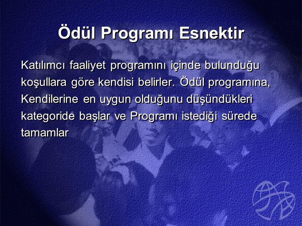 Ödül Programı Esnektir Katılımcı faaliyet programını içinde bulunduğu koşullara göre kendisi belirler.