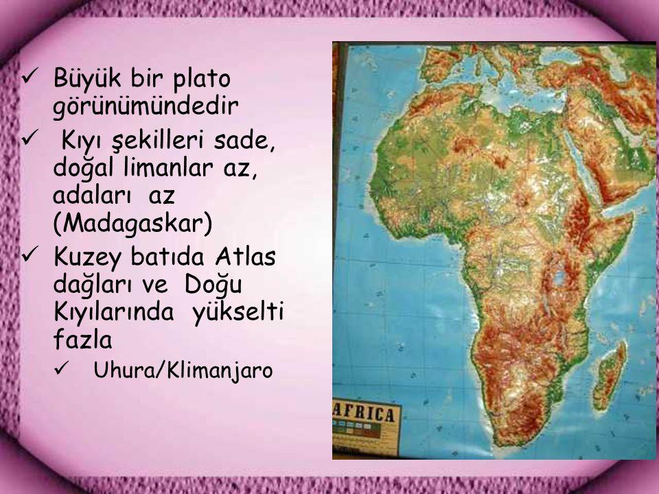 Büyük bir plato görünümündedir Kıyı şekilleri sade, doğal limanlar az, adaları az (Madagaskar) Kuzey batıda Atlas dağları ve Doğu Kıyılarında yükselti fazla Uhura/Klimanjaro