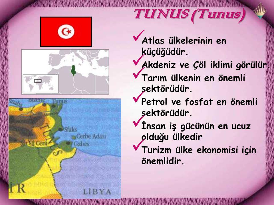 TUNUS (Tunus) TUNUS (Tunus) Atlas ülkelerinin en küçüğüdür.