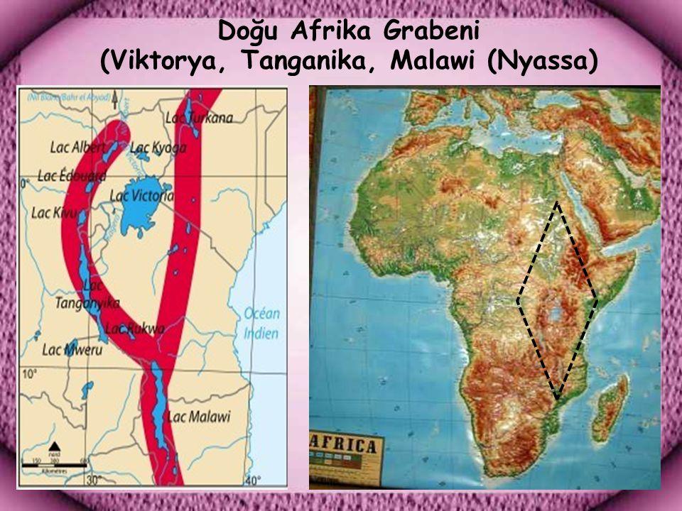 Doğu Afrika Grabeni (Viktorya, Tanganika, Malawi (Nyassa)