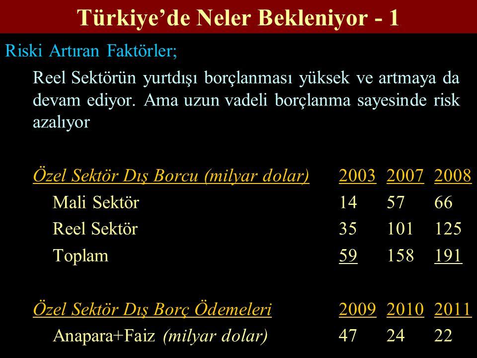 Türkiye'de Neler Bekleniyor - 1 Riski Artıran Faktörler; Reel Sektörün yurtdışı borçlanması yüksek ve artmaya da devam ediyor. Ama uzun vadeli borçlan