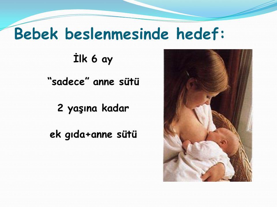 Bebek beslenmesinde hedef: İlk 6 ay sadece anne sütü 2 yaşına kadar ek gıda+anne sütü