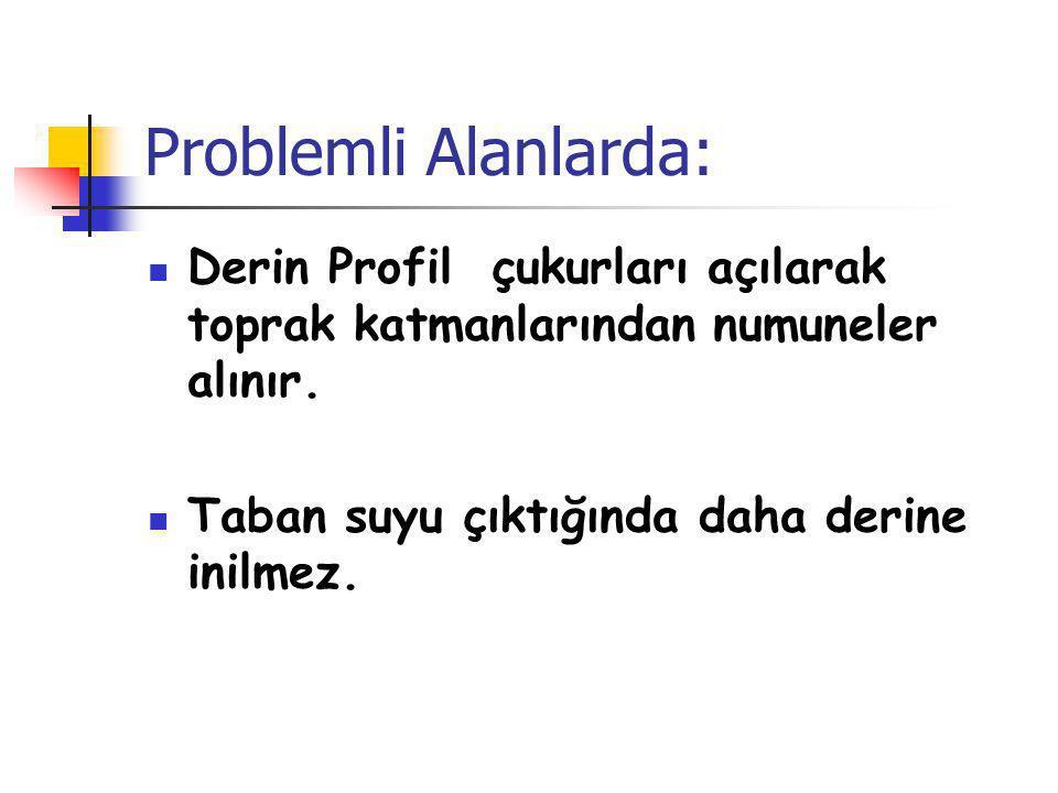 Problemli Alanlarda: Derin Profil çukurları açılarak toprak katmanlarından numuneler alınır.