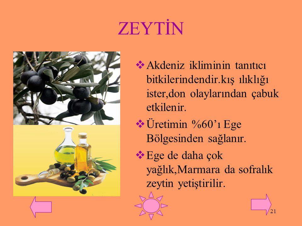 20 YAĞ BİTKİLERİ  Genellikle Akdeniz iklimi bitkileridir.