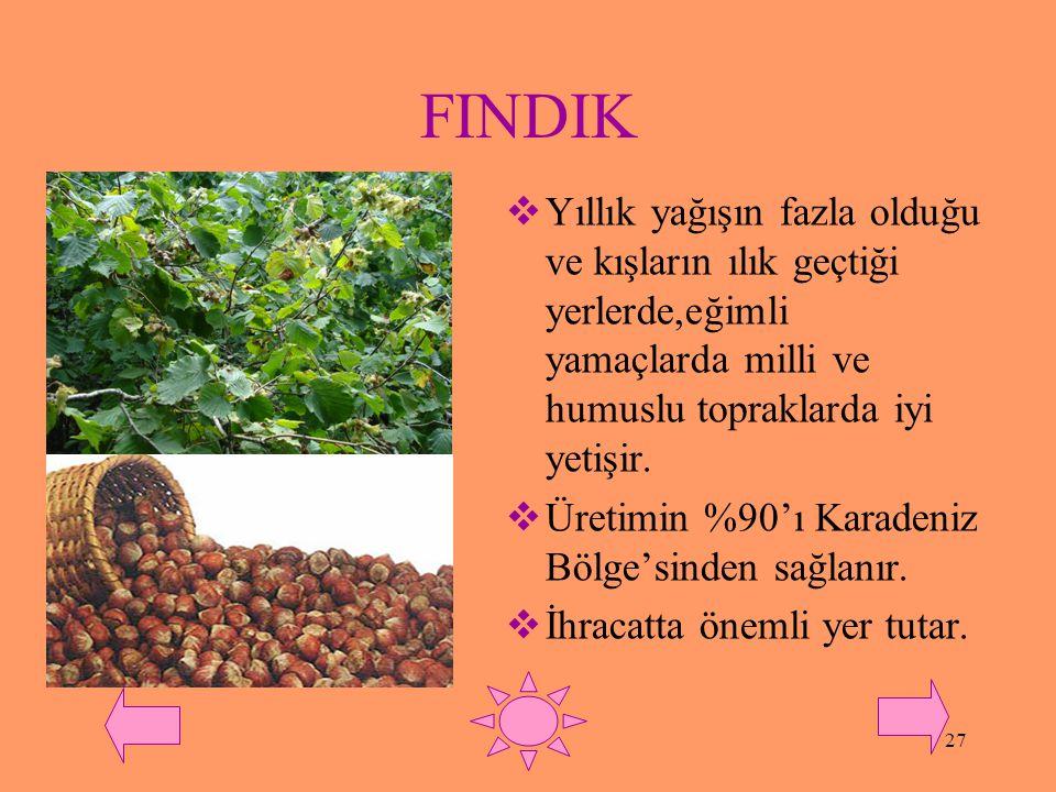 26 MEYVECİLİK  Türkiye'nin iklimindeki çeşitlilik değişik türde meyve yetiştirilmesine imkan sağlamıştır.