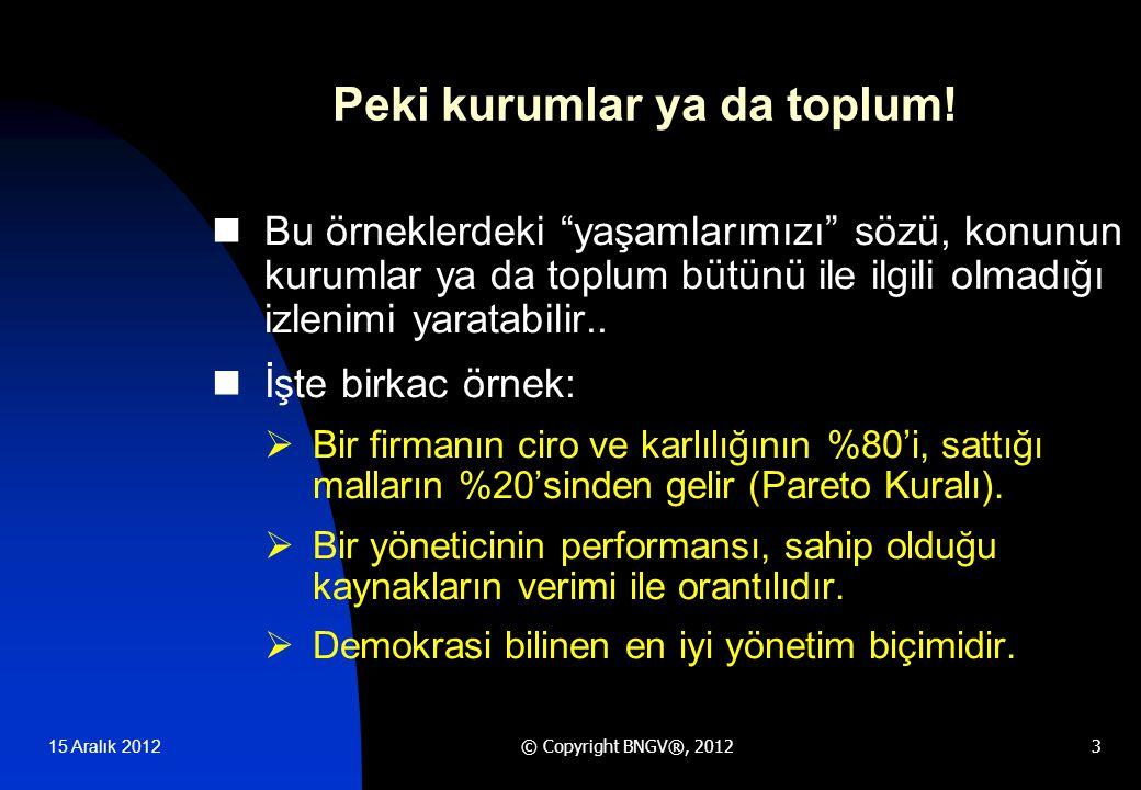 15 Aralık 2012 © Copyright BNGV®, 20123 Peki kurumlar ya da toplum.
