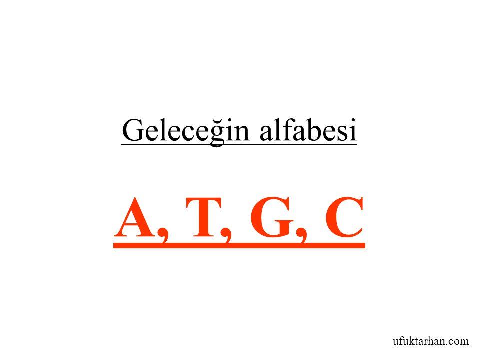 ufuktarhan.com Geleceğin alfabesi A, T, G, C