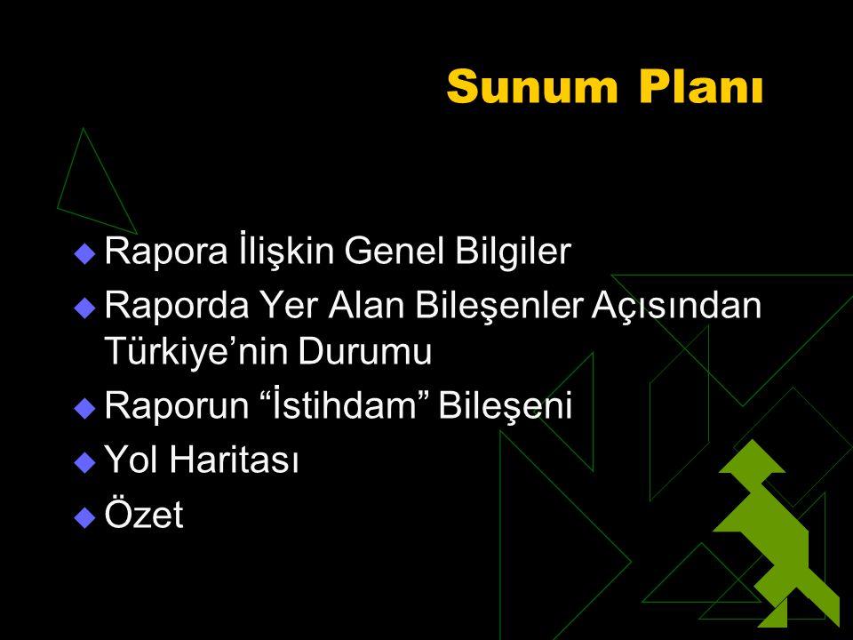 Sunum Planı  Rapora İlişkin Genel Bilgiler  Raporda Yer Alan Bileşenler Açısından Türkiye'nin Durumu  Raporun İstihdam Bileşeni  Yol Haritası  Özet