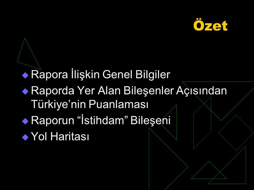 Özet  Rapora İlişkin Genel Bilgiler  Raporda Yer Alan Bileşenler Açısından Türkiye'nin Puanlaması  Raporun İstihdam Bileşeni  Yol Haritası