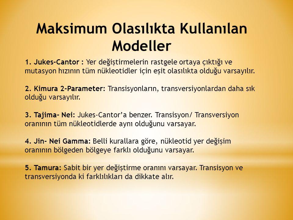 Maksimum Olasılıkta Kullanılan Modeller 1.