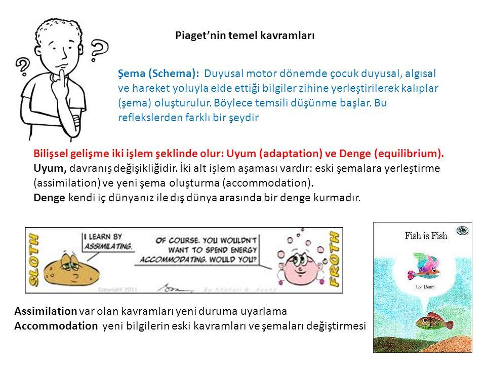 Piaget'nin temel kavramları Şema (Schema): Duyusal motor dönemde çocuk duyusal, algısal ve hareket yoluyla elde ettiği bilgiler zihine yerleştirilerek