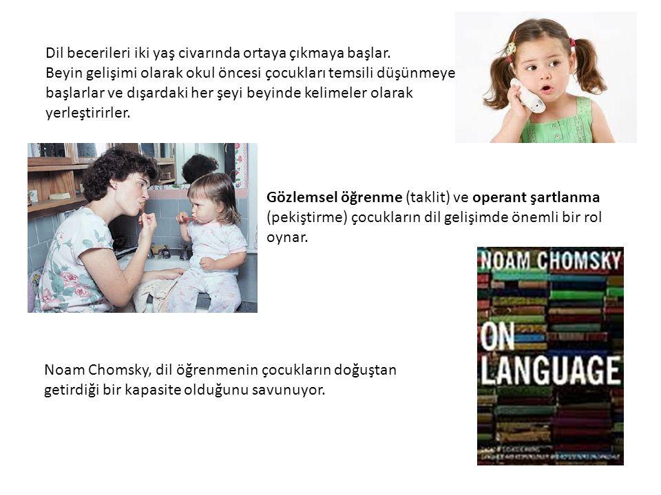 Dil becerileri iki yaş civarında ortaya çıkmaya başlar. Beyin gelişimi olarak okul öncesi çocukları temsili düşünmeye başlarlar ve dışardaki her şeyi