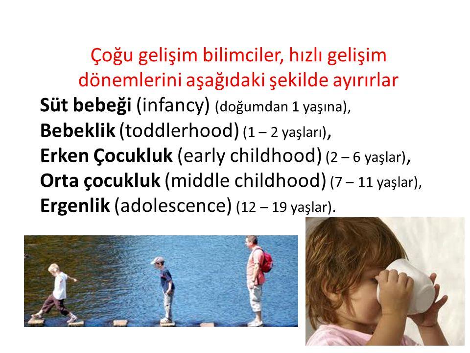 Çoğu gelişim bilimciler, hızlı gelişim dönemlerini aşağıdaki şekilde ayırırlar Süt bebeği (infancy) (doğumdan 1 yaşına), Bebeklik (toddlerhood) (1 – 2