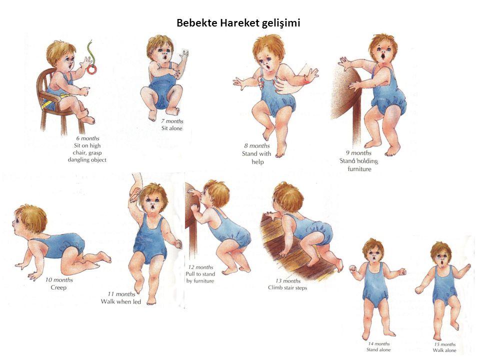 Dil becerileri iki yaş civarında ortaya çıkmaya başlar.