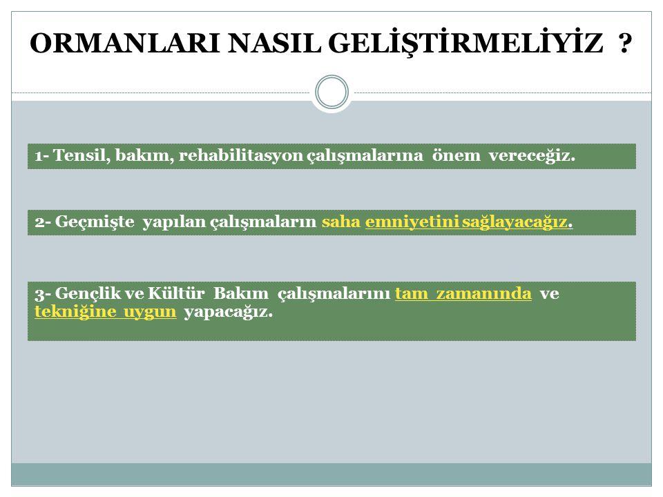 ORMANLARI NASIL İŞLETMELİYİZ .