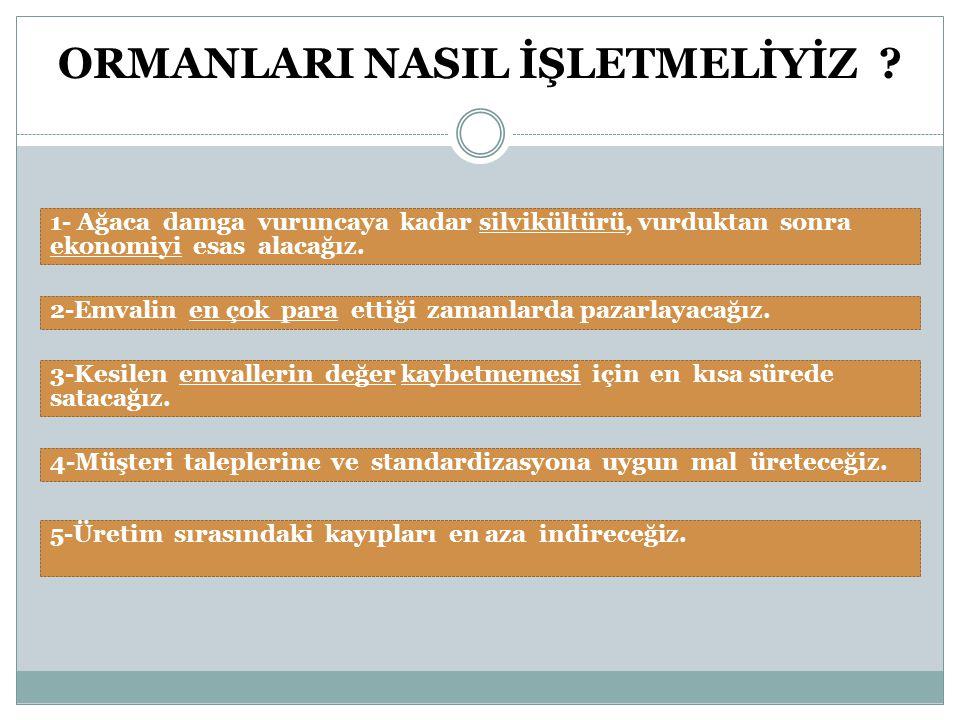 ORMAN İŞLETMELERİ NASIL OLMALI .