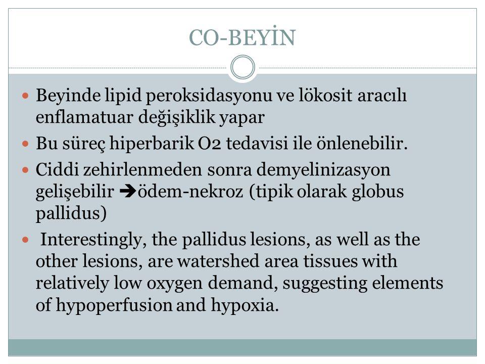 CO-BEYİN Beyinde lipid peroksidasyonu ve lökosit aracılı enflamatuar değişiklik yapar Bu süreç hiperbarik O2 tedavisi ile önlenebilir. Ciddi zehirlenm