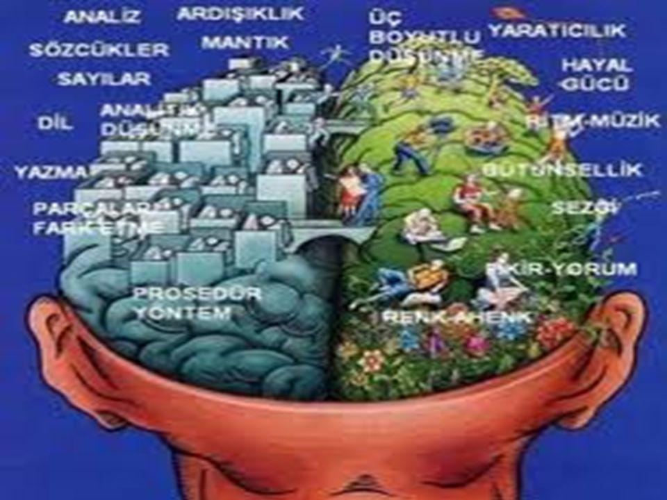  Beyin temelli öğrenmede öğrenenler yalnızca çalıştıkları konu ile ilgili bağlantıları görmezler, ayni zamanda önceki bilgileriyle yeni bilgileri arasında ilişki kurarak anlamlı öğrenmeyi gerçekleştirirler.