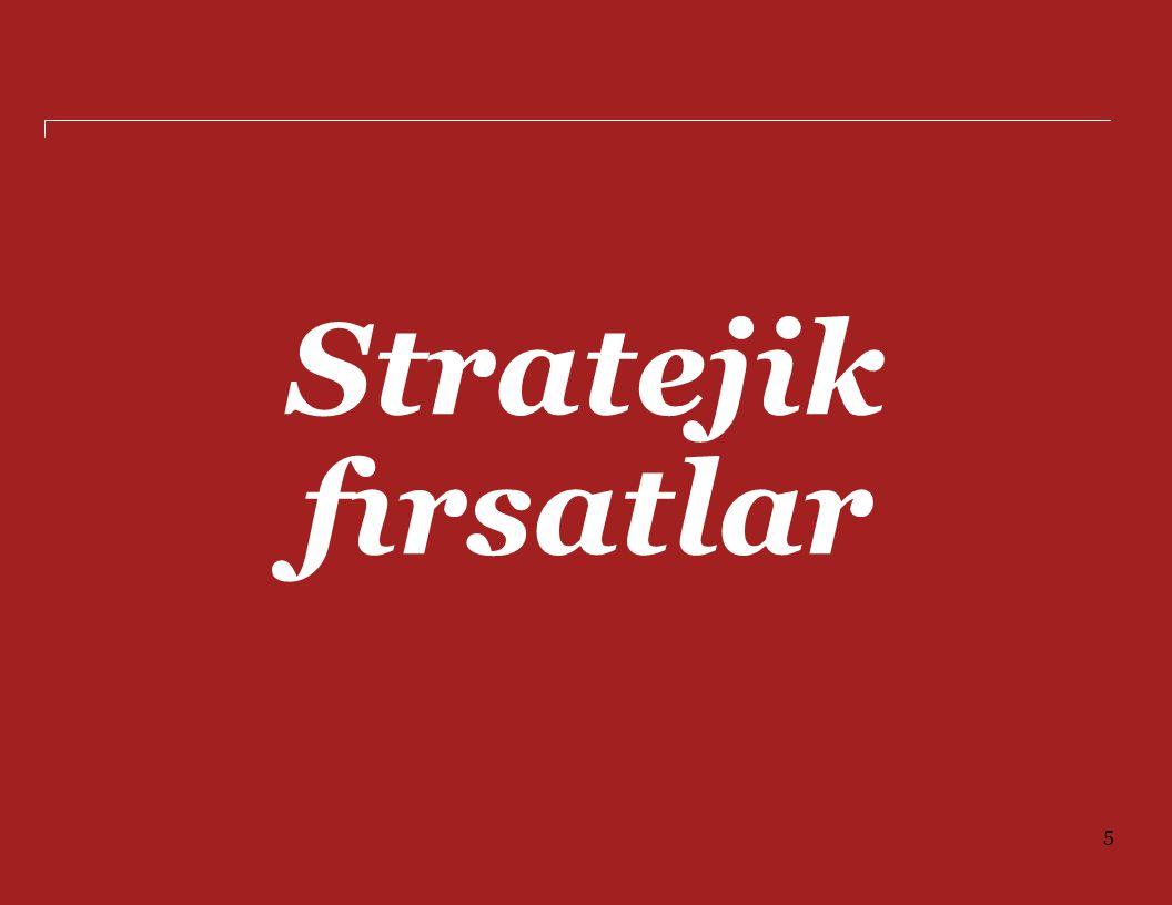 Stratejik fırsatlar 5