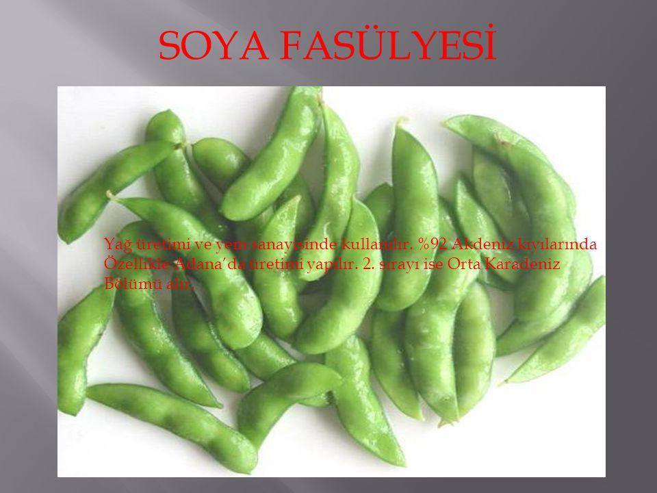 SOYA FASÜLYESİ Yağ üretimi ve yem sanayisinde kullanılır.