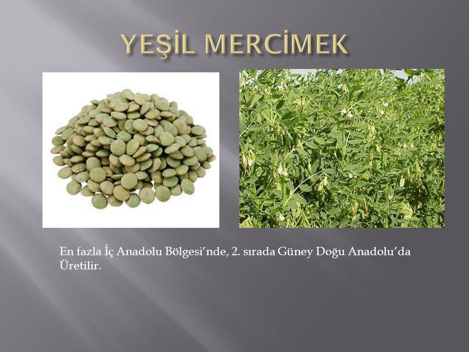 En fazla İç Anadolu Bölgesi'nde, 2. sırada Güney Doğu Anadolu'da Üretilir.