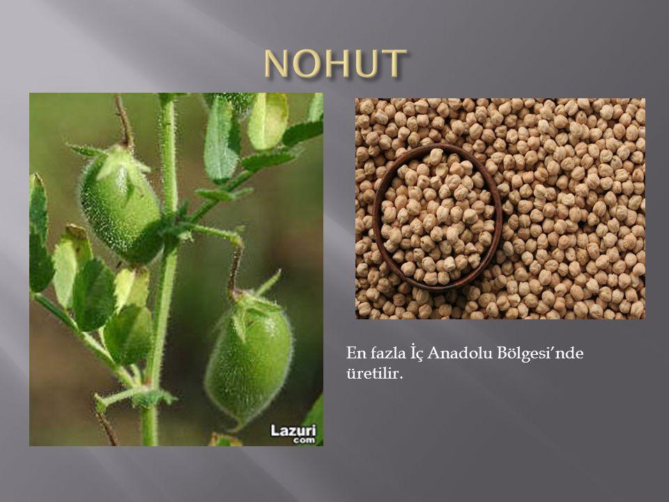 En fazla İç Anadolu Bölgesi'nde üretilir.