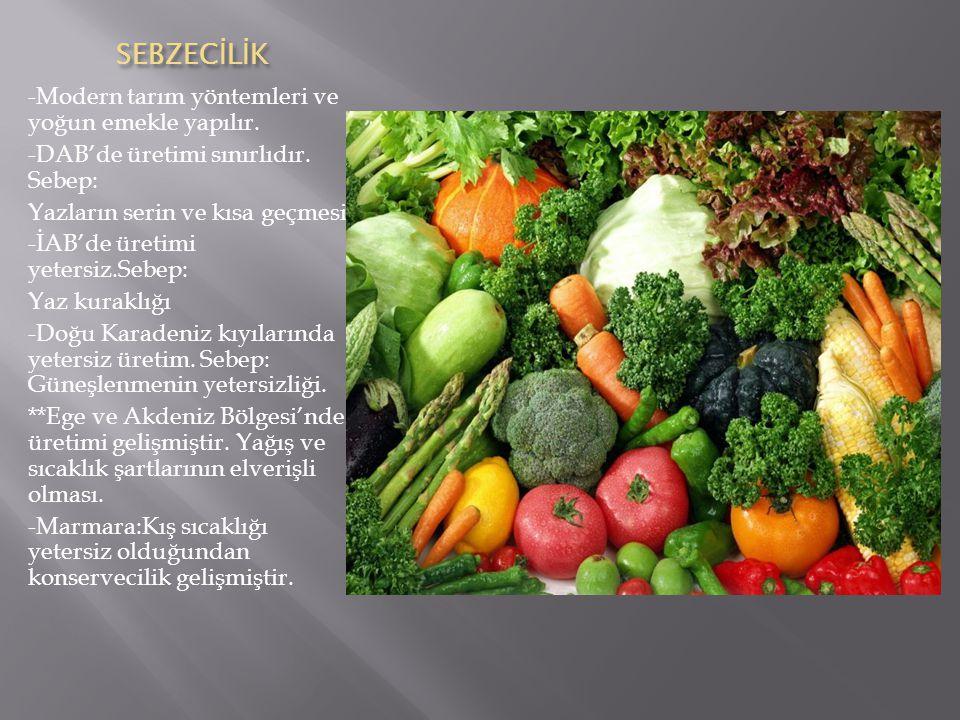SEBZEC İ L İ K -Modern tarım yöntemleri ve yoğun emekle yapılır.