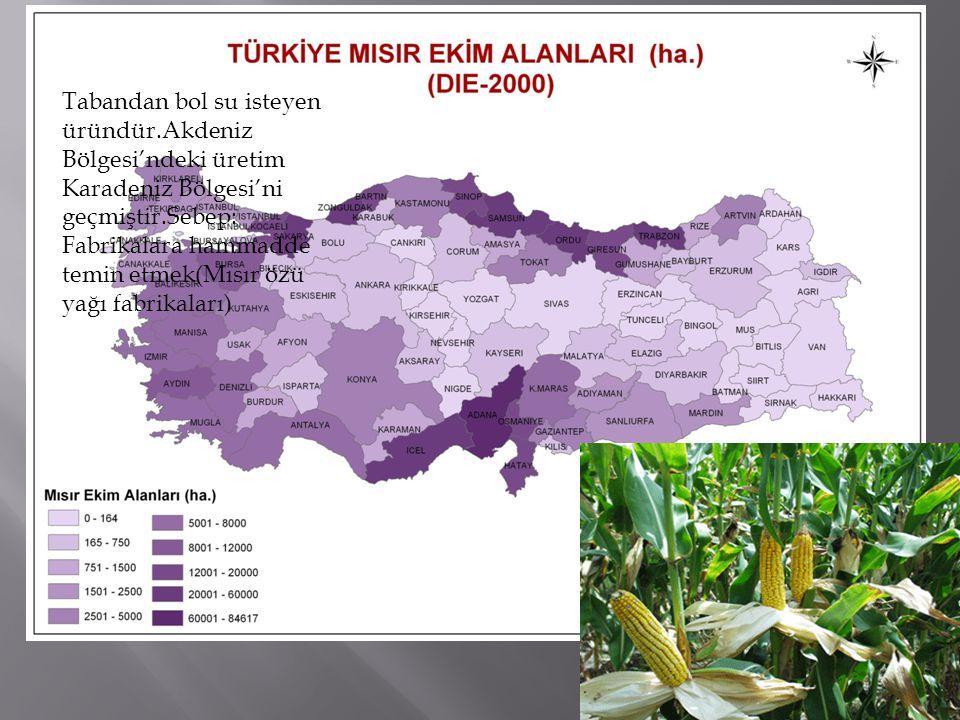 Sırasıyla en fazla;İç Anadolu, Akdeniz Ve Karadeniz bölgelerinde üretilir.