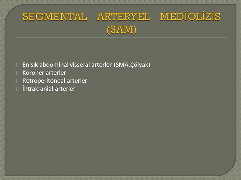  En sık abdominal visseral arterler (SMA,Çölyak)  Koroner arterler  Retroperitoneal arterler  İntrakranial arterler