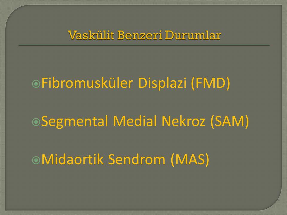  Fibromusküler Displazi (FMD)  Segmental Medial Nekroz (SAM)  Midaortik Sendrom (MAS)