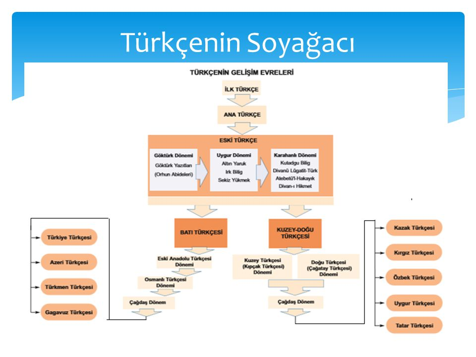 Türkçenin Soyağacı