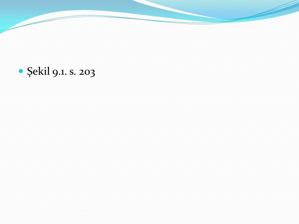 Şekil 9.1. s. 203