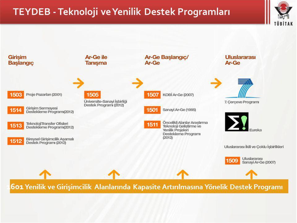 TEYDEB - Teknoloji ve Yenilik Destek Programları 1601 Yenilik ve Girişimcilik Alanlarında Kapasite Artırılmasına Yönelik Destek Programı