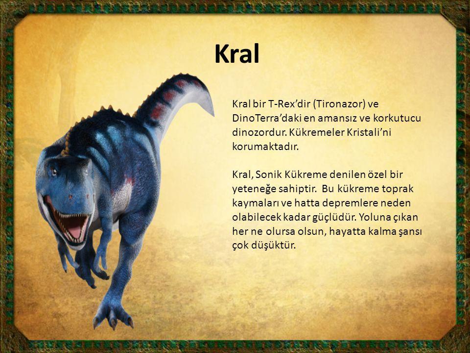 Kral Kral bir T-Rex'dir (Tironazor) ve DinoTerra'daki en amansız ve korkutucu dinozordur. Kükremeler Kristali'ni korumaktadır. Kral, Sonik Kükreme den
