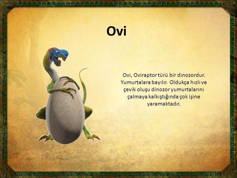 Ovi Ovi, Oviraptor türü bir dinozordur. Yumurtalara bayılır. Oldukça hızlı ve çevik oluşu dinozor yumurtalarını çalmaya kalkıştığında çok işine yarama