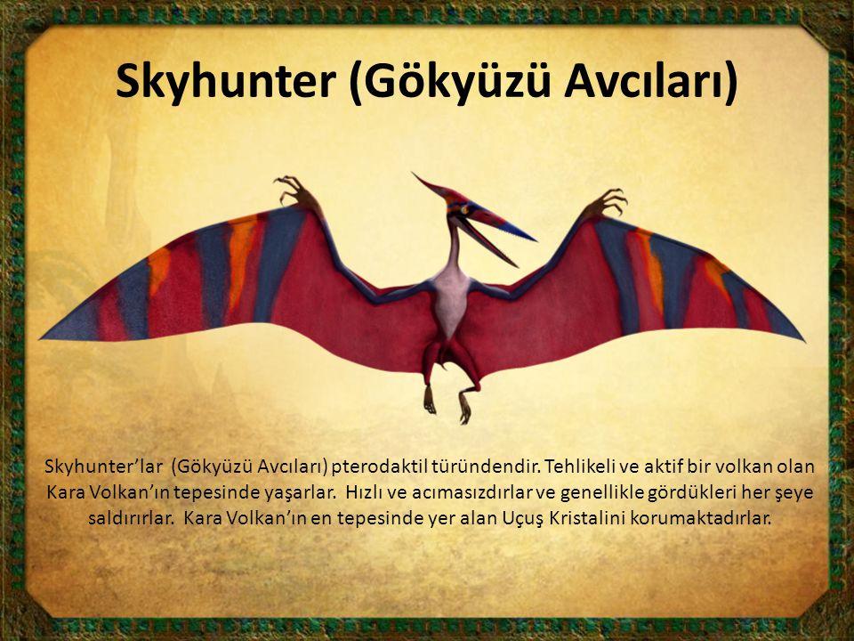 Skyhunter (Gökyüzü Avcıları) Skyhunter'lar (Gökyüzü Avcıları) pterodaktil türündendir. Tehlikeli ve aktif bir volkan olan Kara Volkan'ın tepesinde yaş