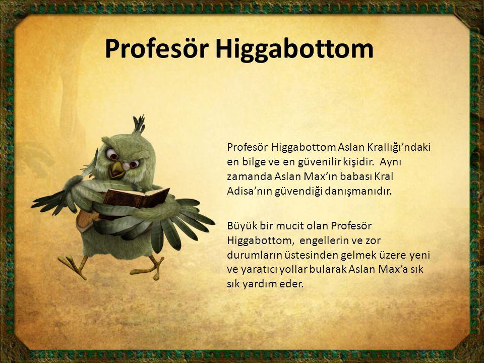 Profesör Higgabottom Aslan Krallığı'ndaki en bilge ve en güvenilir kişidir. Aynı zamanda Aslan Max'ın babası Kral Adisa'nın güvendiği danışmanıdır. Bü