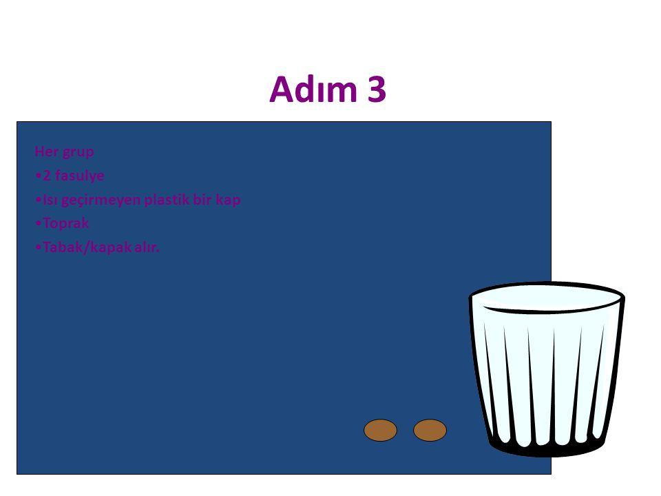 Her grup 2 fasulye Isı geçirmeyen plastik bir kap Toprak Tabak/kapak alır. Adım 3